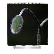 Future Poppy Shower Curtain