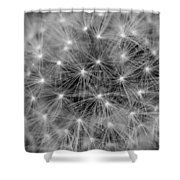 Fuzzy - Black And White Shower Curtain