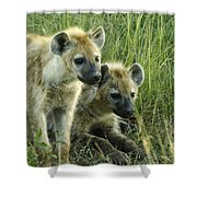 Fuzzy Baby Hyenas Shower Curtain
