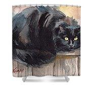 Fuzzy Black Cat Shower Curtain
