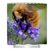 Fuzzy Honey Bee Shower Curtain