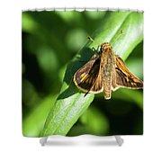 Fuzzy Moth Shower Curtain