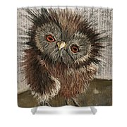 Fuzzy Owl Shower Curtain