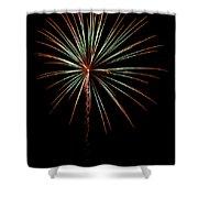 Fwsc 2014-38 Shower Curtain