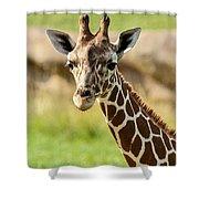 G Is For Giraffe Shower Curtain