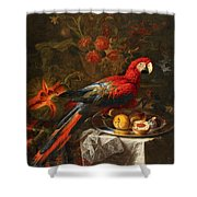Gabriello Salci  Fruit Still Life With A Parrot Shower Curtain