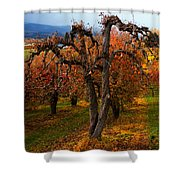 Gabriel's Message Shower Curtain