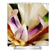 Gala Shower Curtain