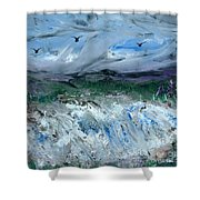 Gale Winds Shower Curtain