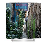 Gallery Alley Shower Curtain