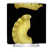 Galletti Shower Curtain