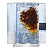 Cat In The Rust Shower Curtain