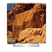 Gambels Quail In Profile Valley Of Fire Shower Curtain