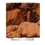 Gambels Quail Valley Of Fire Shower Curtain