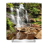 Ganoga Falls Ricketts Glen Shower Curtain