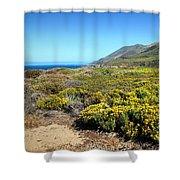 Garapata Beauty Shower Curtain