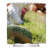 Garden Animals Shower Curtain