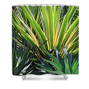 Garden Designs Shower Curtain