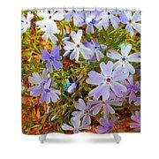 Flower Photography- Floral Art- Digital-floral Fireworks Shower Curtain