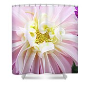 Garden Floral Art Pink Dahlia Flower Baslee Troutman Shower Curtain