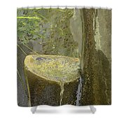 Garden Fountain Shower Curtain