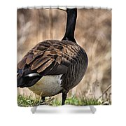 Garden Goose Shower Curtain