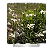 Garden Happiness Shower Curtain