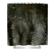 Garden In Winter. Shower Curtain