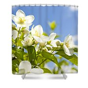 Garden Jasmin Shower Curtain