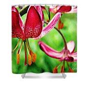 Garden Jewels 1 Shower Curtain