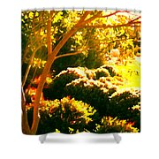 Garden Landscape On A Sunny Day Shower Curtain