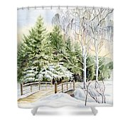 Garden Landscape Winter Shower Curtain