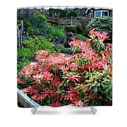 Garden Oasis Shower Curtain