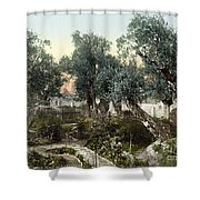 Garden Of Gethsemane Shower Curtain