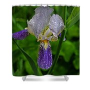 Garden Of Light Shower Curtain