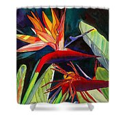 Garden Of Paradise Shower Curtain