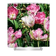 Garden Of Pink Parrot Tulips Shower Curtain