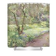 Garden Path Shower Curtain by Mildred Anne Butler