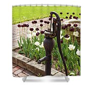 Garden Pump From The Old Days Shower Curtain