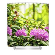 Garden Rododendron Bush Shower Curtain