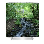 Garden Springs Creek In Spokane Shower Curtain