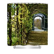 Garden Walkway Shower Curtain