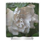 Gardenia Blossom Shower Curtain