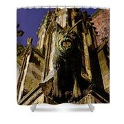 Gargoyle At The Dom Church In Utrecht In The Evening 188 Shower Curtain