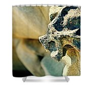 Gargoyle Coming Out Of The Rocks Gabriola Island. Shower Curtain