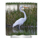 Garza Blanca Shower Curtain