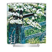 Gate And Blossom Shower Curtain