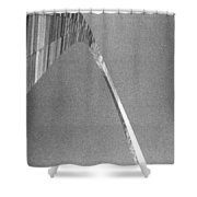 Gateway Arch Shower Curtain