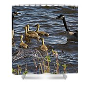 Gather Up Shower Curtain