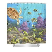 Gathering In The Reef Shower Curtain